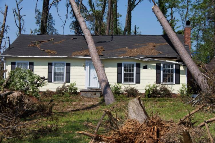 House With Fallen Trees